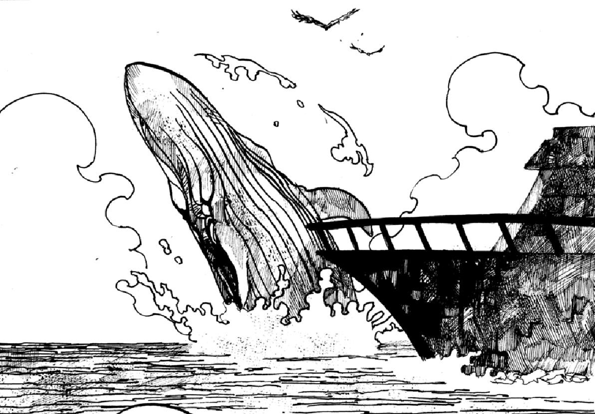 クジラガイ